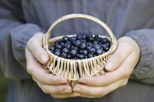 mindful-eating-blueberries